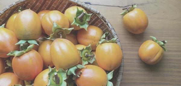 大雪たいせつ食べ物柿