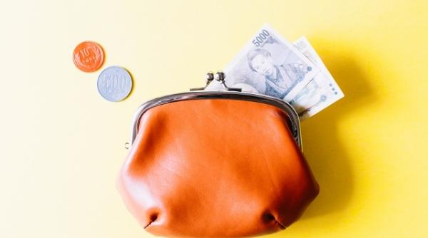 財布の日とは、キャンペーン