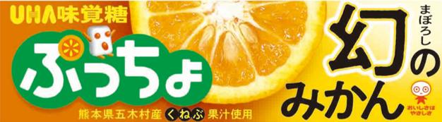 ぷっちょ幻のみかん熊本県五木村産