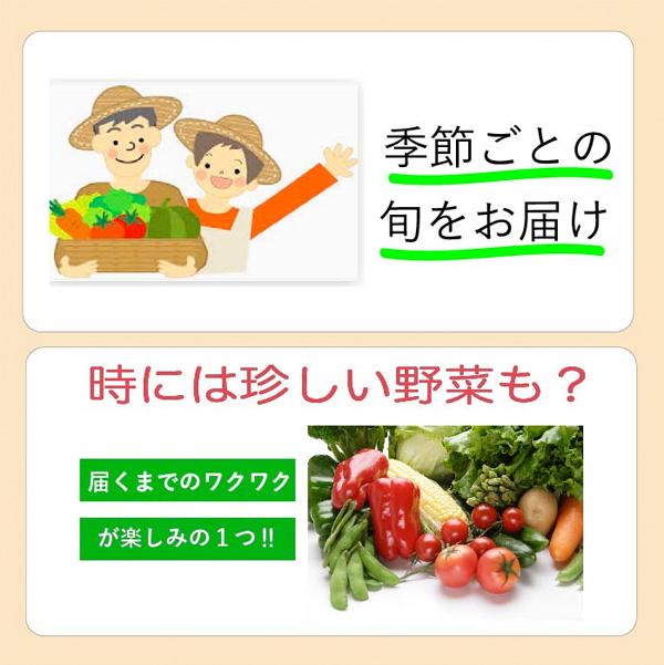 3フードロス通販野菜セットコロナ応援