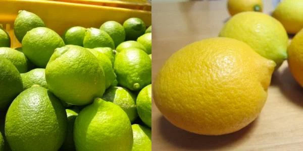 3ふるさと納税レモン減農薬食べ方