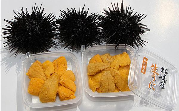 4ふるさと納税北海道ムラサキウニ美味しいもの