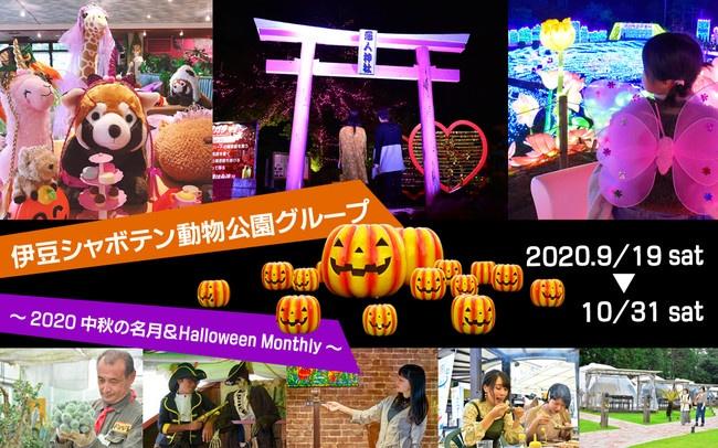 伊豆シャボテン動物公園gpハロウィン2020中秋の名月イベント