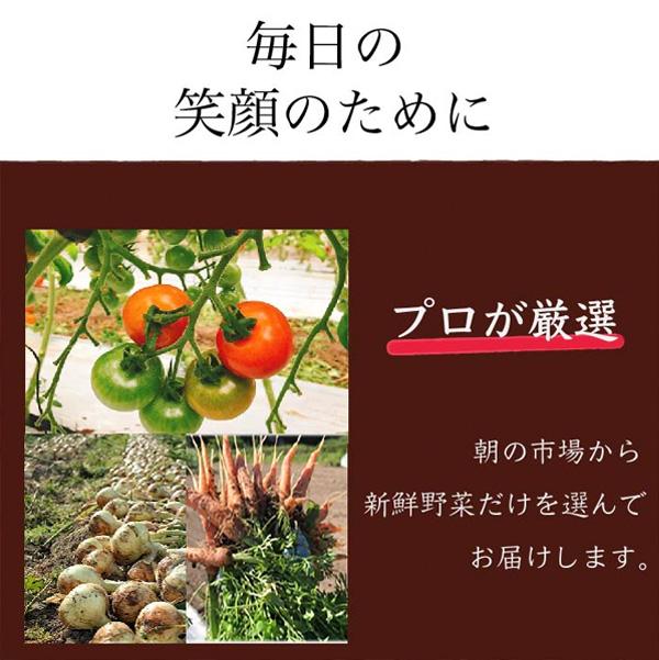 4フードロス通販野菜セット食品ロス