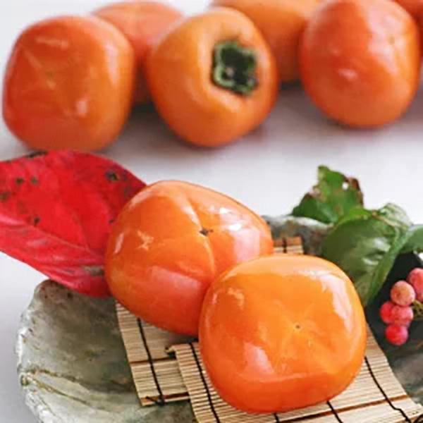 2ふるさと納税たねなし柿和歌山人気